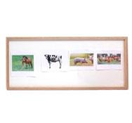 Tablon porta imagenes de madera con frontal de metacrilato extraible