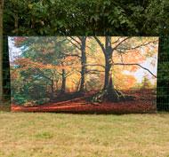 Fondo ambiental de otoño envolvente para exteriores