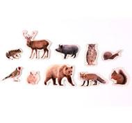 Animales del Bosque magnéticos de bambú set de 10 piezas