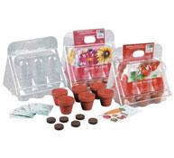 Mini invernadero 6 botes flores clarkia, cosmos, myosotis, primavera rudbeckia, margarita el conjunto
