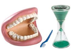 Maxi lote cepillarse los dientes el conjunto