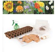 Kits de semillas flores el conjunto