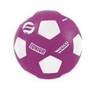 Balón de fútbol junior tamaño 5 la unidad